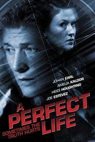 พิศวาสสีเลือด A Perfect Life (2011)