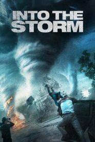 โคตรพายุมหาวิบัติกินเมือง Into the Storm (2014)