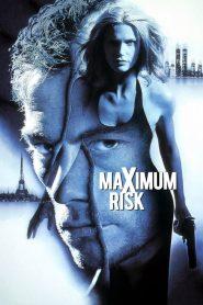 คนอึดล่าสุดโลก Maximum Risk (1996)