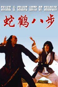 ศึกบัญญัติ 8 พญายม Snake and Crane Arts of Shaolin (1978)