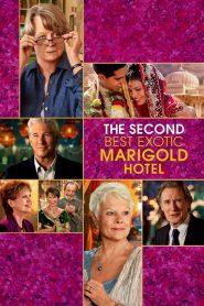 โรงแรมสวรรค์ อัศจรรย์หัวใจ 2 The Second Best Exotic Marigold Hotel (2015)