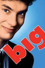 บิ๊ก อยากโตก็ได้โต Big (1988)