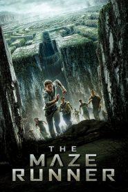 เมซ รันเนอร์ วงกตมฤตยู The Maze Runner (2014)