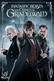 สัตว์มหัศจรรย์: อาชญากรรมของกรินเดลวัลด์ Fantastic Beasts: The Crimes of Grindelwald (2018)