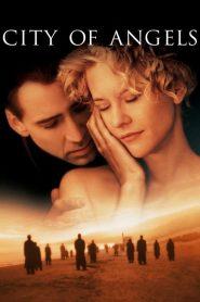 สัมผัสรักจากเทพ เสพซึ้งถึงวิญญาณ City of Angels (1998)