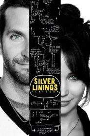 ลุกขึ้นใหม่ หัวใจมีเธอ Silver Linings Playbook (2012)