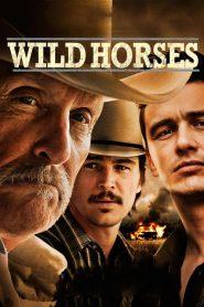ฟื้นคดีโหดฝังแผ่นดิน Wild Horses (2015)