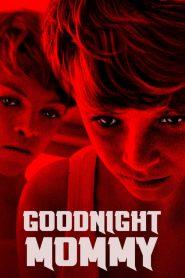 แม่ครับ หลับซะเถอะ Goodnight Mommy (2014)