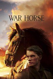 ม้าศึกจารึกโลก War Horse (2011)