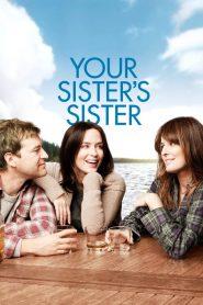 รักพี่หัวใจให้น้อง Your Sister's Sister (2011)
