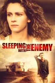 กระชากรักด้วยเลือด Sleeping with the Enemy (1991)