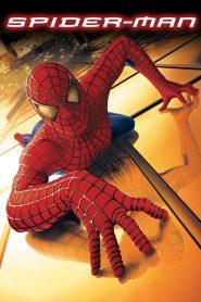 ไอ้แมงมุม Spider-Man (2002)