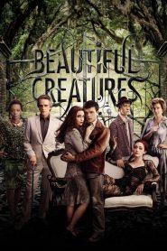 แม่มดแคสเตอร์ Beautiful Creatures (2013)