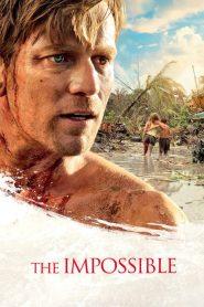 2004 สึนามิ ภูเก็ต The Impossible (2012)