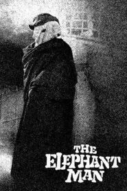 มนุษย์ช้าง The Elephant Man (1980)