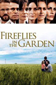 ปาฏิหาริย์สายใยรัก Fireflies in the Garden (2008)
