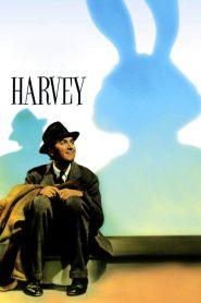 ฮาร์วี่ย์ เพื่อนซี้ไม่มีซ้ำ Harvey (1950)