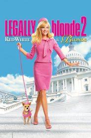 สาวบลอนด์หัวใจดี๊ด๊า 2 Legally Blonde 2: Red, White & Blonde (2003)