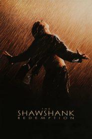 ชอว์แชงค์ มิตรภาพ ความหวัง ความรุนแรง The Shawshank Redemption (1994)