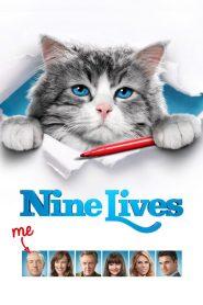 แมวเก้าชีวิต เพี้ยนสุดโลก Nine Lives (2016)