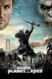 รุ่งอรุณแห่งพิภพวานร Dawn of the Planet of the Apes (2014)