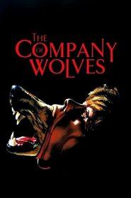 เขย่าขวัญสาวน้อยหมวกแดง The Company of Wolves (1984)