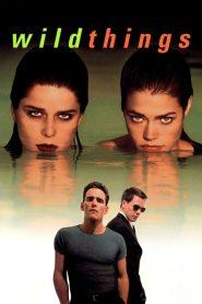 เกมซ่อนกล Wild Things (1998)