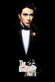 เดอะ ก็อดฟาเธอร์ ภาค 2 The Godfather: Part II (1974)