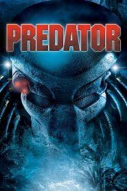 คนไม่ใช่คน Predator (1987)