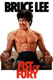 ไอ้หนุ่มซินตึ๊งล้างแค้น Fist of Fury (1972)