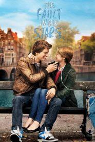 ดาวบันดาล The Fault in Our Stars (2014)