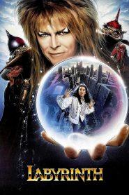 มหัศจรรย์เขาวงกต Labyrinth (1986)