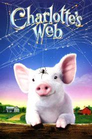 แมงมุมเพื่อนรัก Charlotte's Web (2006)