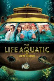 กัปตันบวมส์กับทีมป่วนสมุทร The Life Aquatic with Steve Zissou (2004)