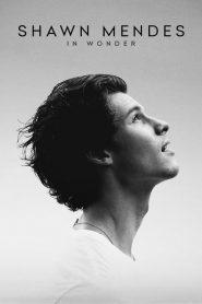 ชอว์น เมนเดส: ช่วงเวลามหัศจรรย์ Shawn Mendes: In Wonder (2020)