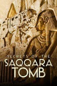ไขความลับสุสานซัคคารา Secrets of the Saqqara Tomb (2020)